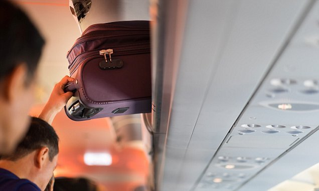 Third of passengers say they would try to retrieve bags in emergency