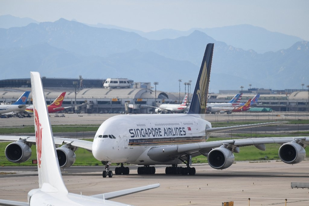 Singapore Airlines bans lion bones in cargo