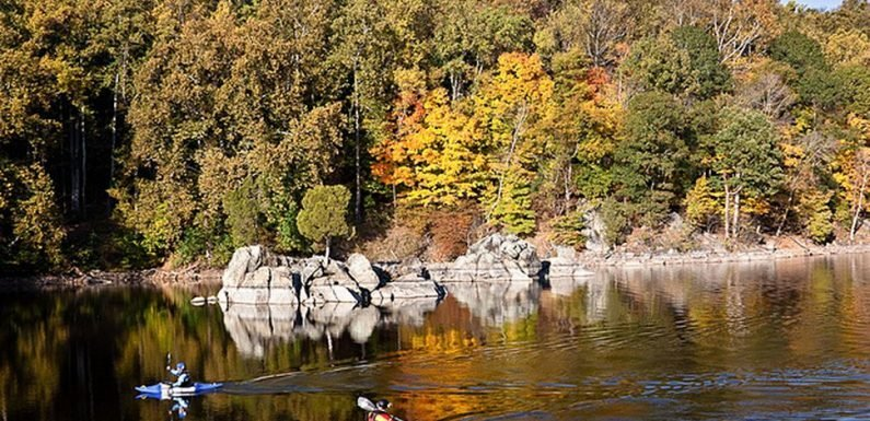 5 Awesome Camping Spots (for All Types of Outdoor Enthusiasts) to Visit This Fall