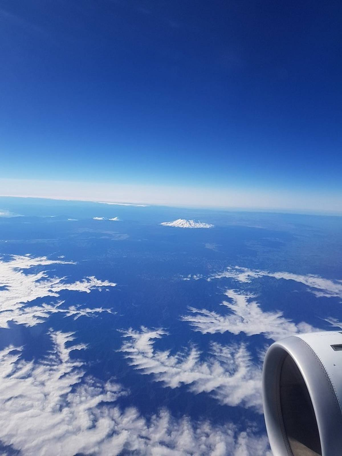 Flying from Wellington to Auckland with Air New Zealand