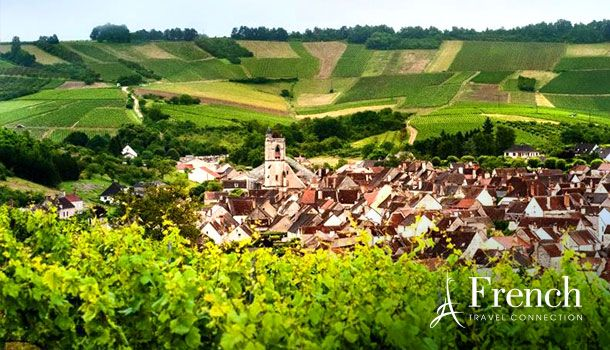 Burgundy Indulgence: Exclusive VIP Treatment ·