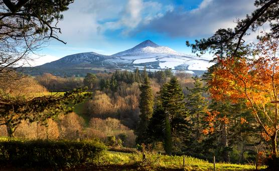 WATCH: Climb the Sugar Loaf this year? It takes just over an hour…