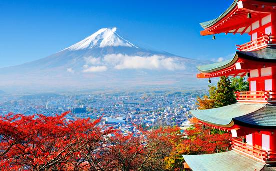 Japan Rugby World Cup 2019: The ultimate travel guide for Irish rugby fans