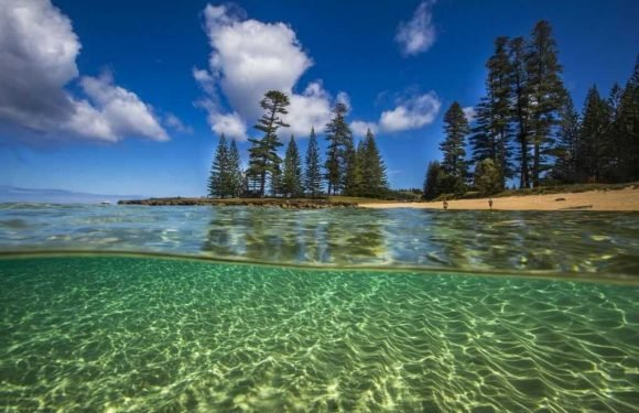 Escape to Norfolk Island ·
