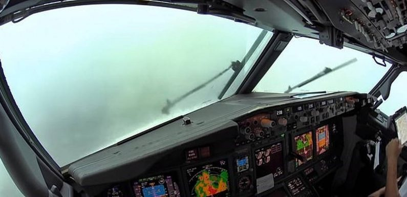 Nerve-wracking cockpit footage shows pilots landing during a thunderstorm, battling strong winds and torrential rain