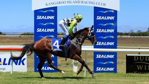 Take a punt with SeaLink for the Kangaroo Island Cup ·