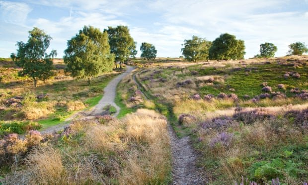 Share your experiences of lost footpaths