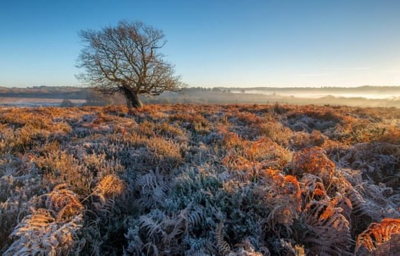 Top 10 UK winter walks – chosen by travel and nature writers