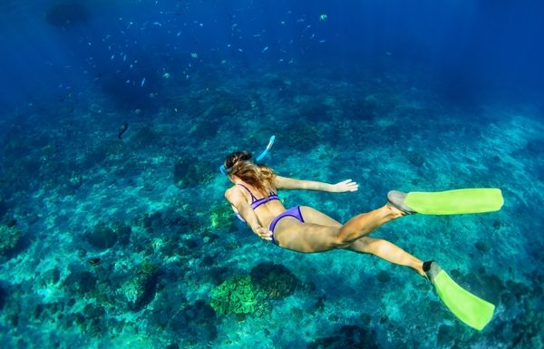 Choose Your Own Adventure with Bahamas Paradise Cruise Line