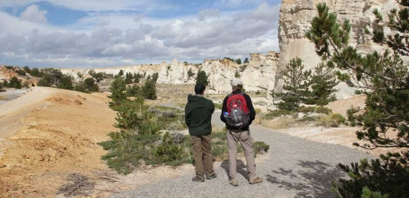The Best Free Tourist Attraction in Every State