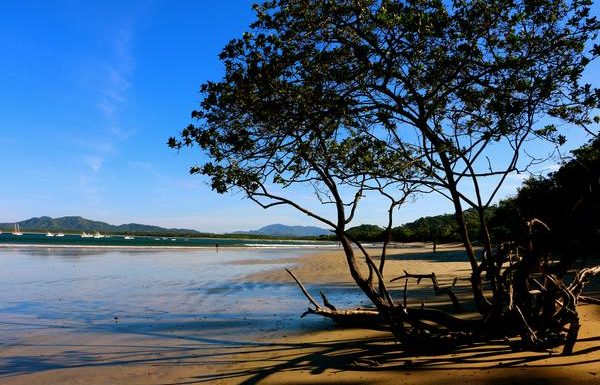 Explore Guanacaste, Costa Rica, With Lindbland Expeditions