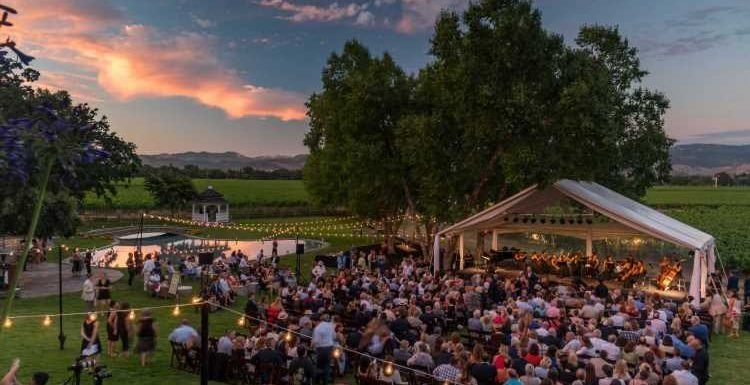 Why You Should Go to Napa Valley This Summer