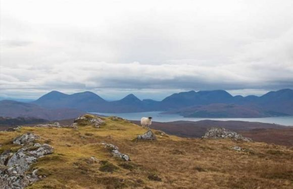 Welcome to a new breed of distilleries and breweries in Scotland's Hebrides