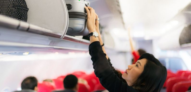 Airlines' hand luggage rules for 2019 including easyJet and Ryanair