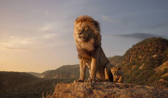 Lion Kings: The magical Kenyan kingdom where lions reign supreme