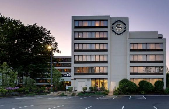 Wave of Change as Sheraton's New Logo Appears on Hotels Worldwide