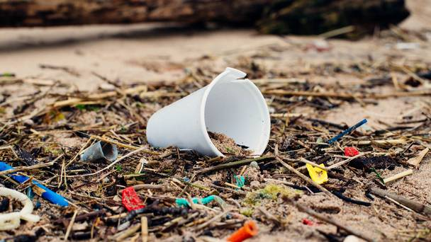 Surge in holidaymakers who go litter picking to get over 'flight shame'