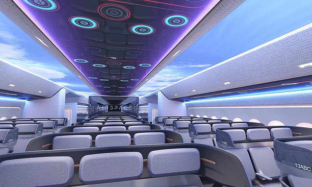Cameras outside toilets could be coming to airline cabins of future