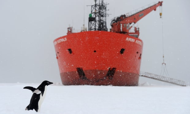 Au revoir Aurora Australis: 'It's a tiny melting pot of humanity isolated in the Southern Ocean'