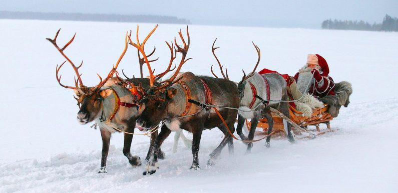 Families can save hundreds of pounds off Lapland holidays in TUI's latest sale