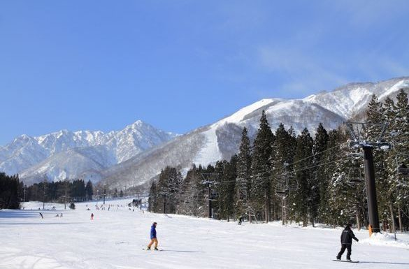 Journey with JR East for the ultimate Japanese ski experience ·