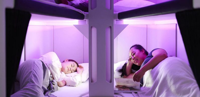Airline unveils bunk beds in economy cabins for flyers to sleep during trips