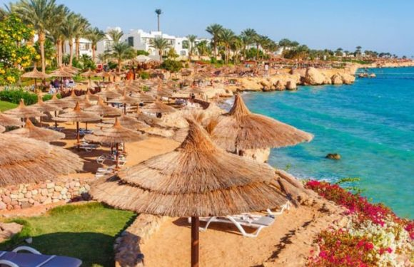 Egypt travel: Flying back into Sharm's charms