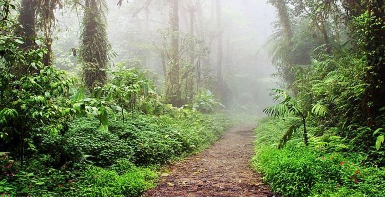 Costa Rica travel: Hang out in an eco paradise