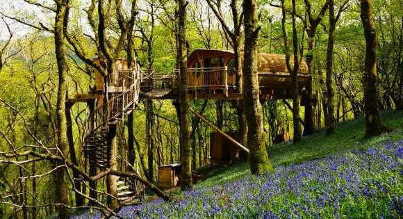 Dreamy treehouses in the UK you can book for idyllic countryside retreats