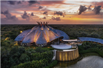 Cirque du Soleil JOYÀ to Reopen in Riviera Maya, Mexico