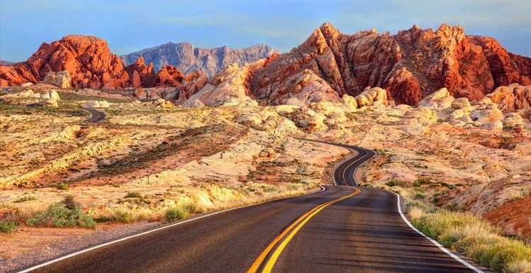 The Road Trip Has Always Been DIY—These Experts Are Here to Change That