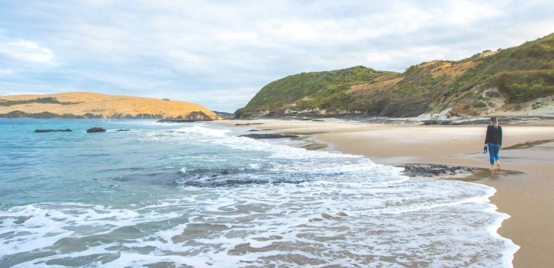 GO NZ: Why a Hokianga holiday is a good alternative to the Bay of Islands