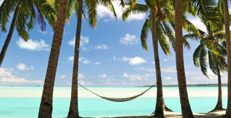 Want to spend a year working remotely in Barbados? Applications are now open