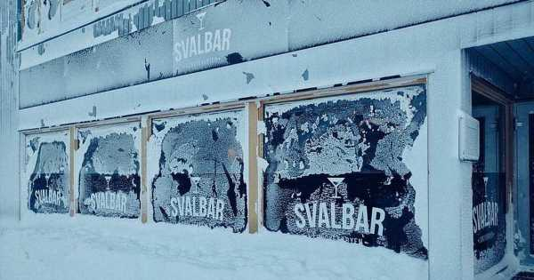 New owner wanted for arctic pub where polar bears are regular visitors