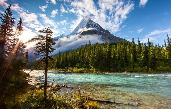 Discover America With Amtrak Vacations' Flash Sale