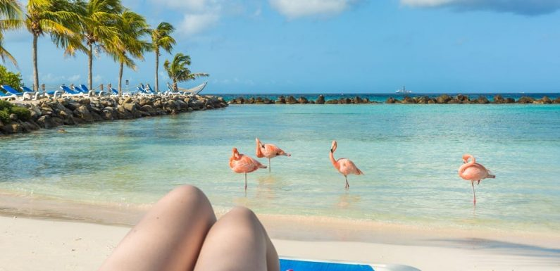 Aruba is giving away discounted hotel stays so that you can live and work on the Caribbean island for up to 3 months