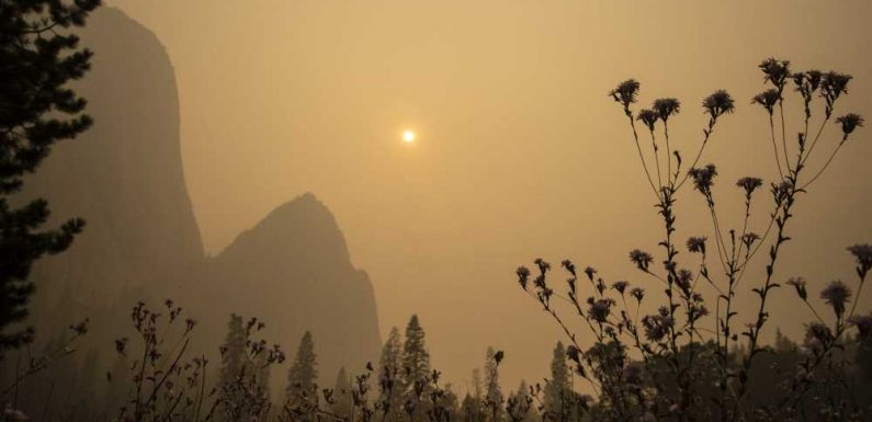 Yosemite National Park Closes Due to Smoke Conditions From Ongoing Wildfires