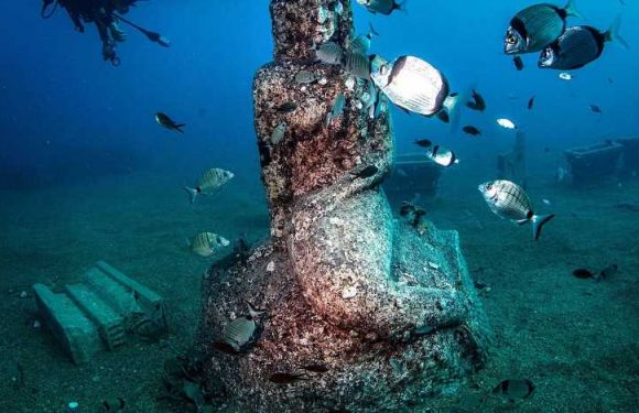France Is Set to Open 3 New Underwater Sculpture Museums This Fall