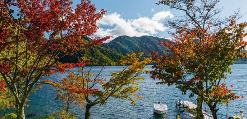 Japan Wants People to Take Working Vacations to Its Stunning National Parks