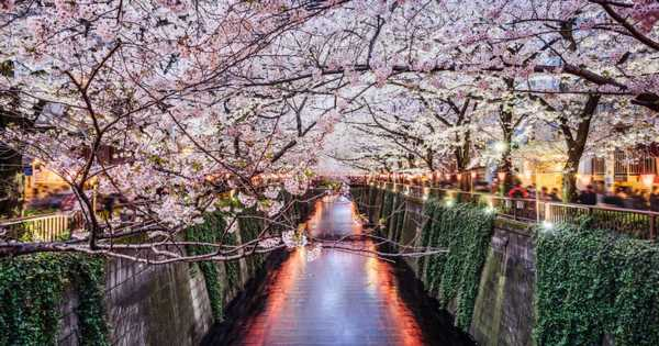 You can get free flights to Japan for holidays in 2021 and 2022