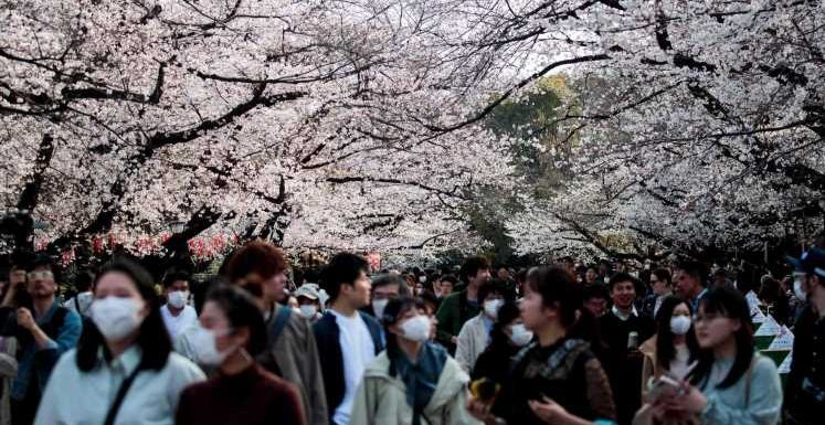 Round trip to Tokyo for $173? Pandemic spawns once-in-a-lifetime airfare deals – if you're ready to travel
