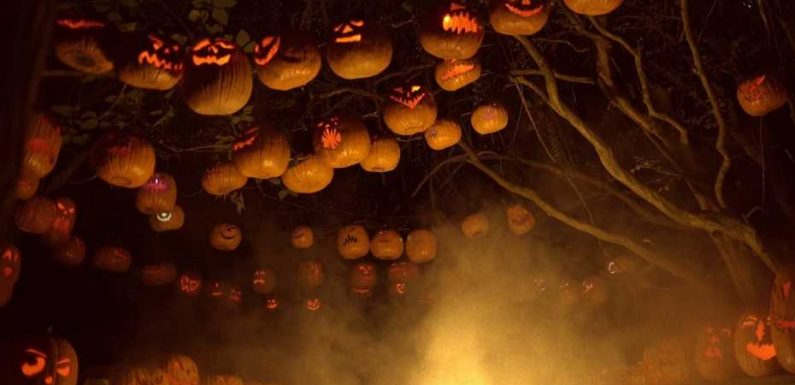 The scariest American Halloween attractions