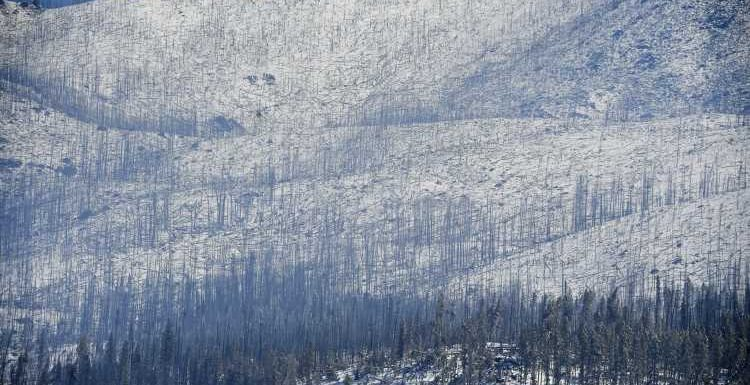 Rocky Mountain National Park opens more areas after East Troublesome fire