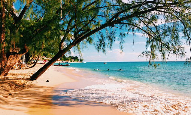 Exploring the pristine beaches and lively restaurant scene in Barbados