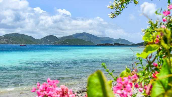 The Latest Traveler Protocols for 20 Caribbean Nations