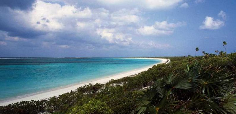 A New York couple drowned on their Turks and Caicos honeymoon four days after their wedding, report says