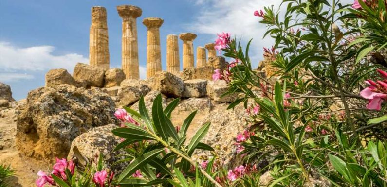 10 Reasons to Visit Sicily on Your Next Trip to Italy