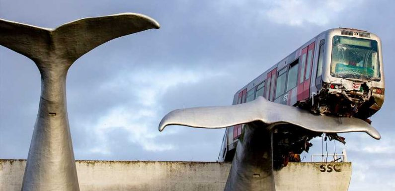 A Whale Tail Sculpture Saved a Train From Falling Off a 32-foot Platform