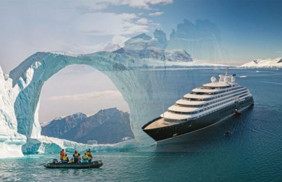 Cruise: 'Unique' Arctic cruise lets 'polar bears' and 'whales' lead its itinerary