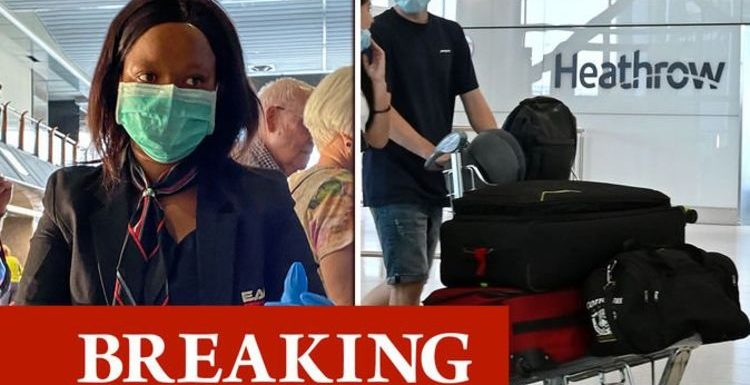Travellers from South Africa told to quarantine 'immediately' following new covid strain